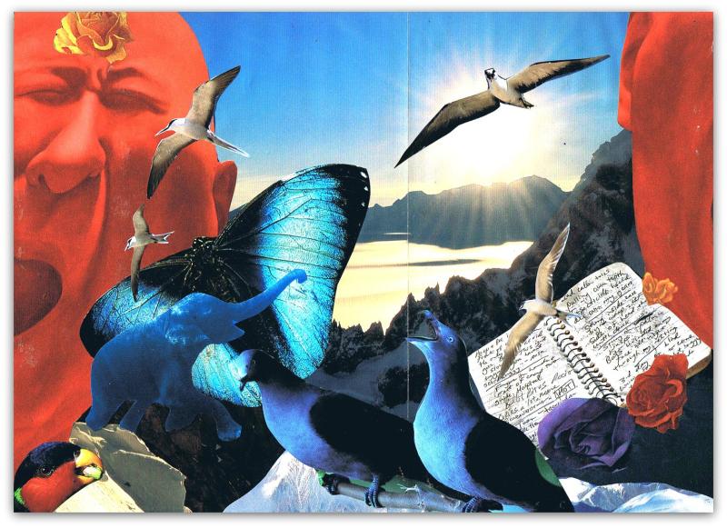 Cathartic Journaling - Shelley Klammer