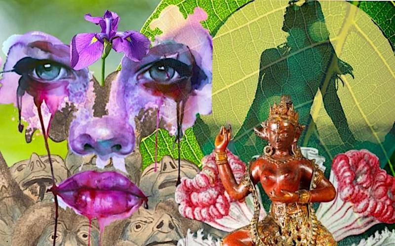Intensidade Emocional - Digital Colagem - Shelley Klammer