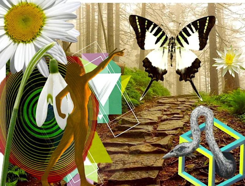 Transformation - Shelley Klammer