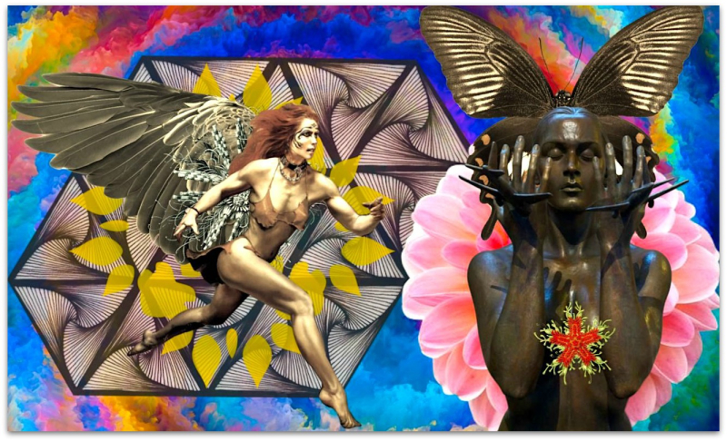 Transformational Rage - Shelley Klammer
