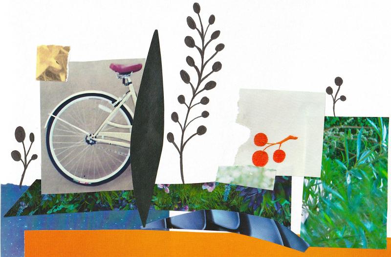 Bicycle 3 - Shelley Klammer