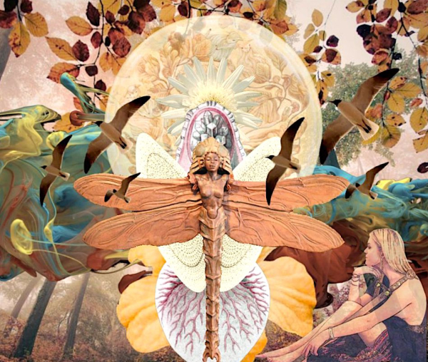 Photo of Imagination wings