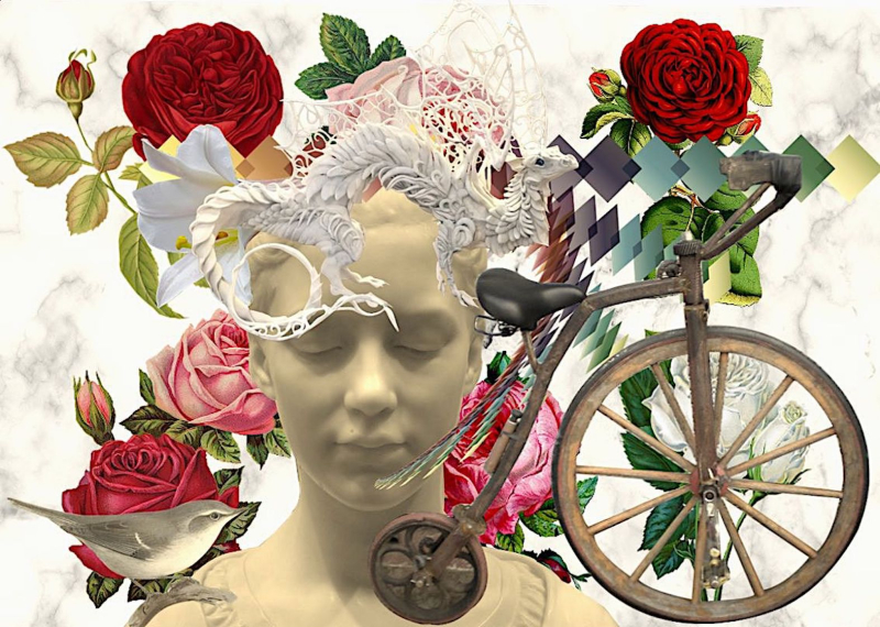 30 Day Affirmation Journals by Shelley Klammer