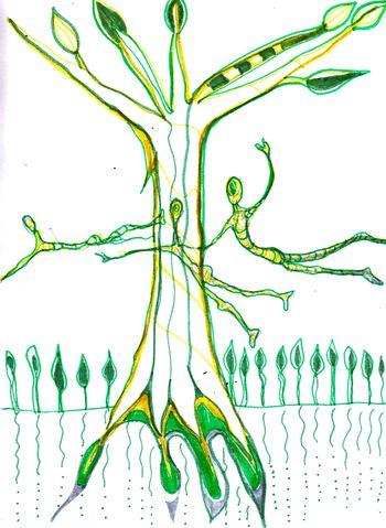 Anxiety Tree